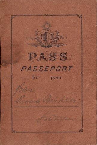 Swiss Canton Lucerne Passport Booklet 1914