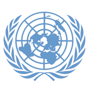 Fake United Nations Passport