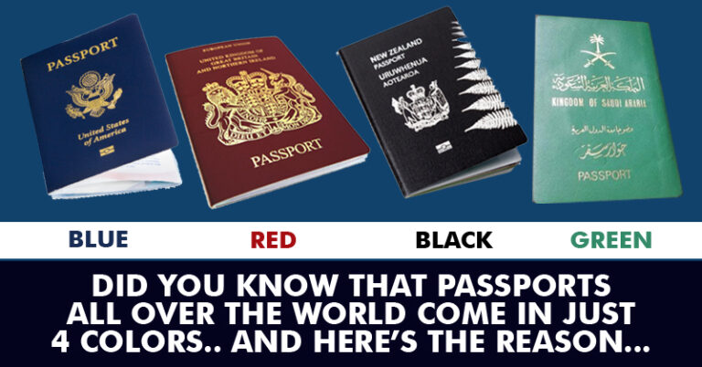 Passport colors of most travel documents